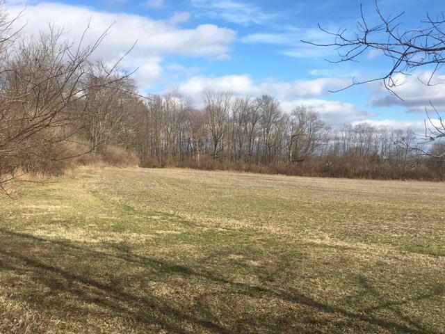 Acreage - Green Twp, OH (photo 1)