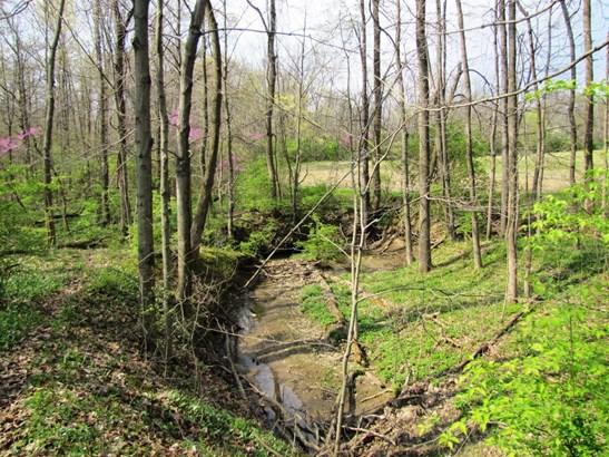 Acreage - Green Twp, OH (photo 5)