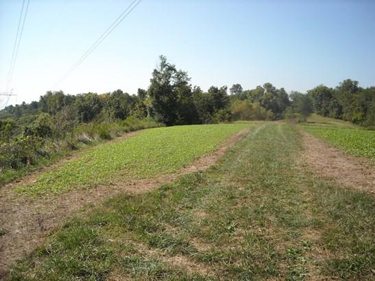 Acreage - Huntington Twp, OH (photo 2)