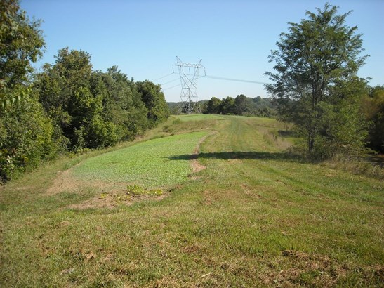 Acreage - Huntington Twp, OH (photo 3)