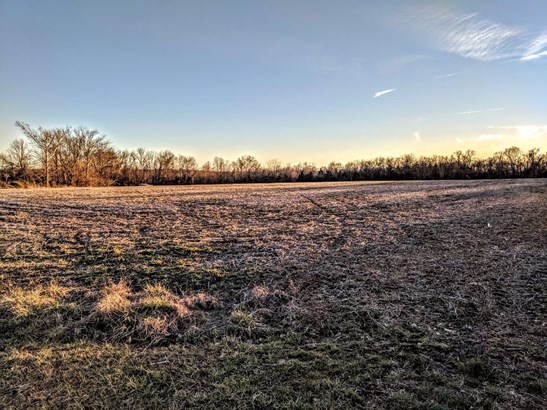Acreage - Franklin Twp, OH (photo 1)