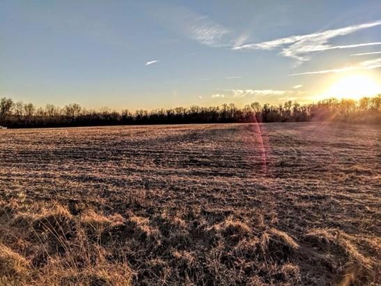 Acreage - Franklin Twp, OH (photo 2)