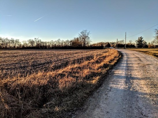 Acreage - Franklin Twp, OH (photo 4)
