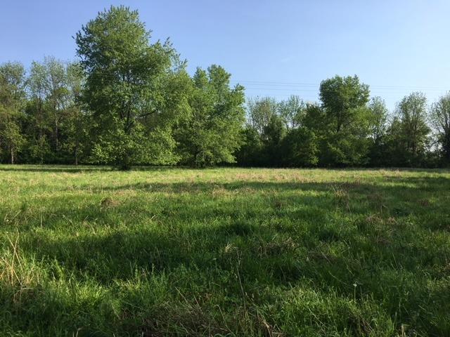 Acreage - Paxton Twp, OH (photo 4)