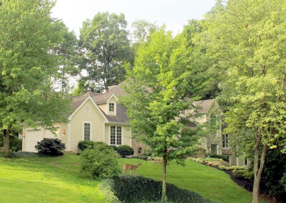 Single Family Residence, Contemporary/Modern,Transitional - Evendale, OH