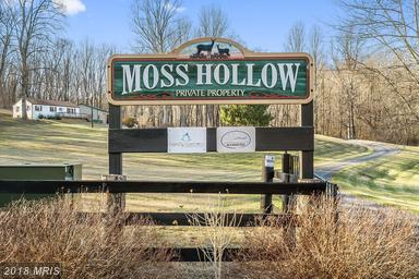 12494 Moss Hollow Rd, Markham, VA - USA (photo 1)