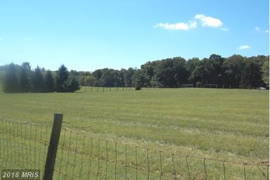 North Fork Road, Purcellville, VA - USA (photo 1)