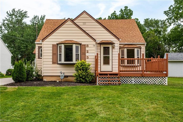 Cape Cod, Single Family - Amherst, OH