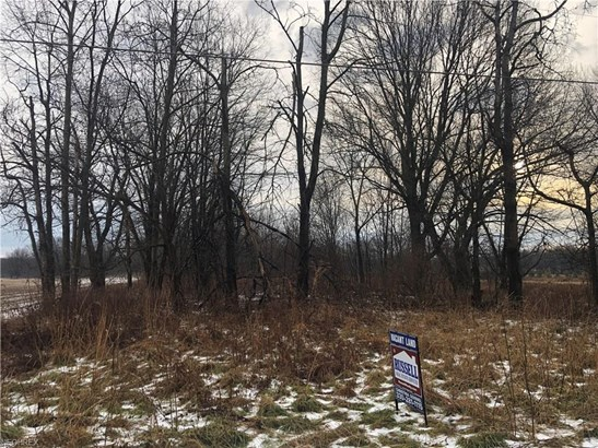 Residential - Mantua, OH (photo 3)