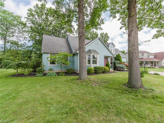 Cape Cod, Single Family - Amherst, OH (photo 3)