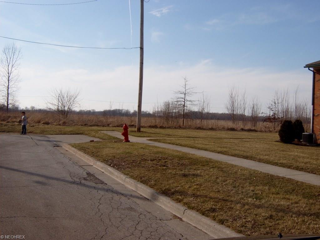 Land - Norwalk, OH (photo 5)