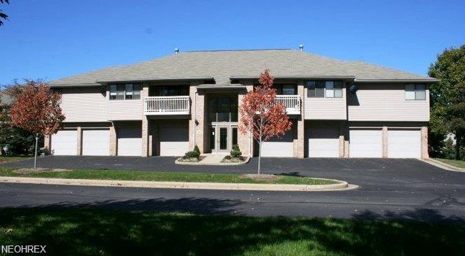 Condominium, Multi-Unit Building,Ranch - Fairlawn, OH (photo 1)