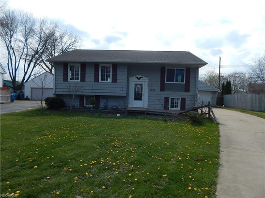Bi-Level, Single Family - Lorain, OH (photo 1)