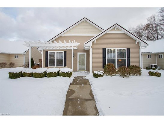 Cluster Home,Ranch, Single Family - North Ridgeville, OH (photo 1)
