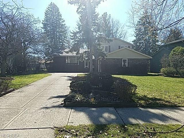 Split Level, Single Family - Lyndhurst, OH (photo 1)