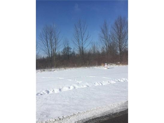 Residential - Grafton, OH (photo 1)