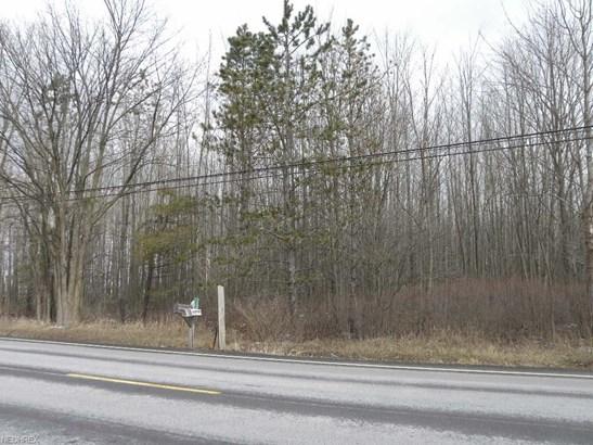 Land - Lagrange, OH (photo 1)