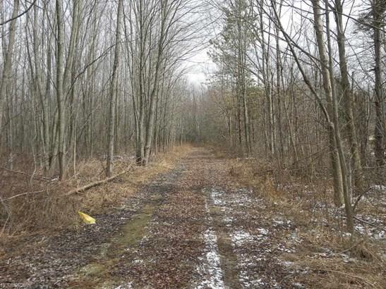 Land - Lagrange, OH (photo 2)
