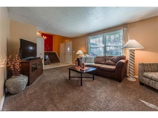 Split Level, Single Family - Huron, OH (photo 4)