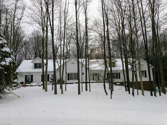 Contemporary/Modern,Ranch, Single Family - Mantua, OH (photo 1)