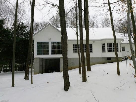Contemporary/Modern,Ranch, Single Family - Mantua, OH (photo 2)