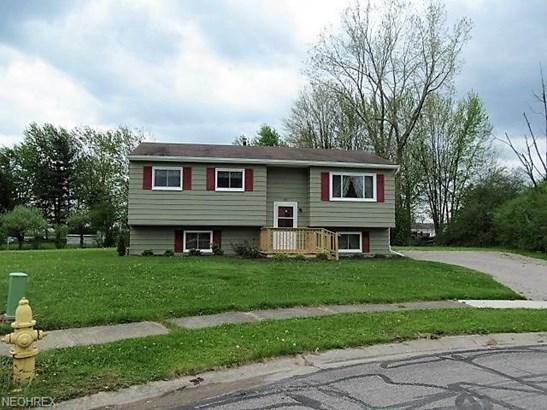 Bi-Level, Single Family - Oberlin, OH (photo 1)