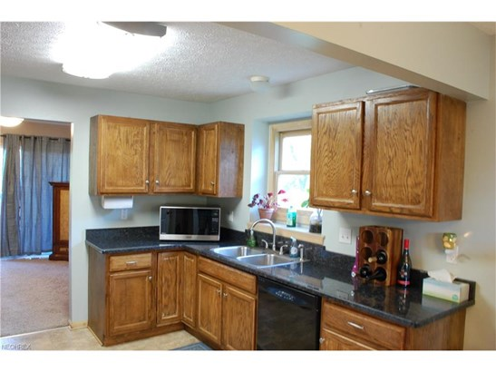 Cluster Home, Single Family - Brunswick, OH (photo 3)