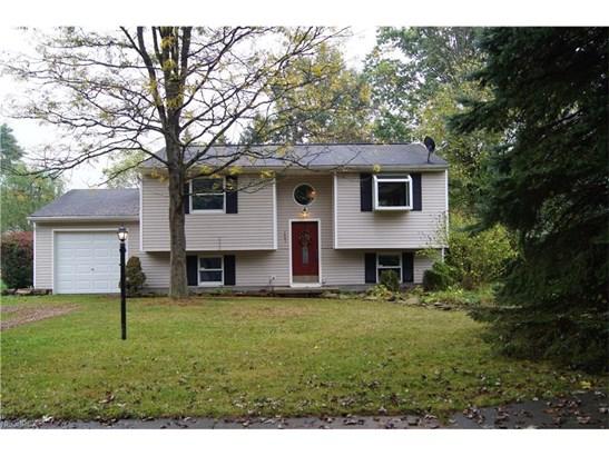 Bi-Level, Single Family - Kent, OH (photo 1)