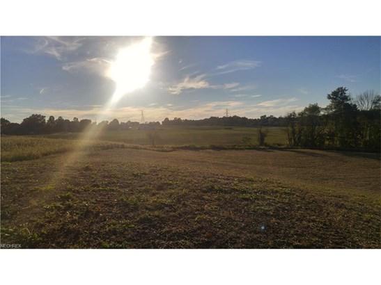 Land - Mogadore, OH (photo 3)