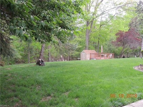 Ranch, Single Family - Seven Hills, OH (photo 5)