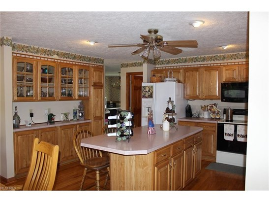 Bi-Level,Conventional, Single Family - Norwalk, OH (photo 4)