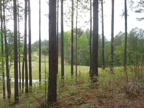 Residential Lot - Sunset, SC (photo 1)