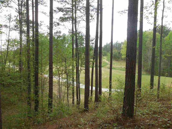 Residential Lot - Sunset, SC (photo 2)