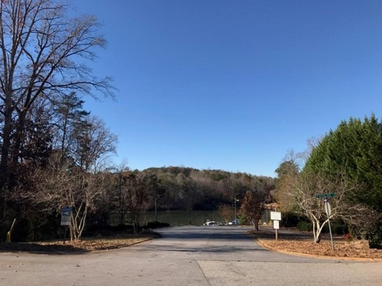 Residential Lot - West Union, SC (photo 2)