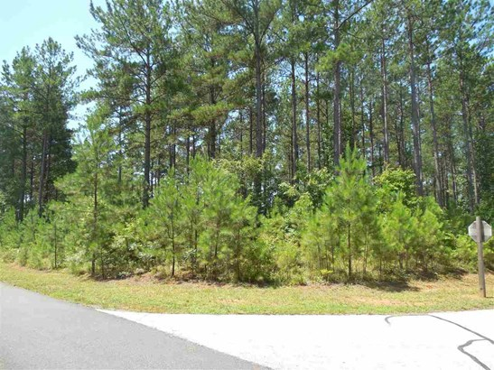 Residential Lot - Sunset, SC (photo 4)