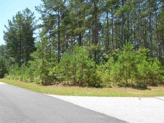 Residential Lot - Sunset, SC (photo 5)