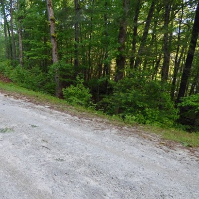 Residential Lot - Mt. Rest, SC (photo 3)