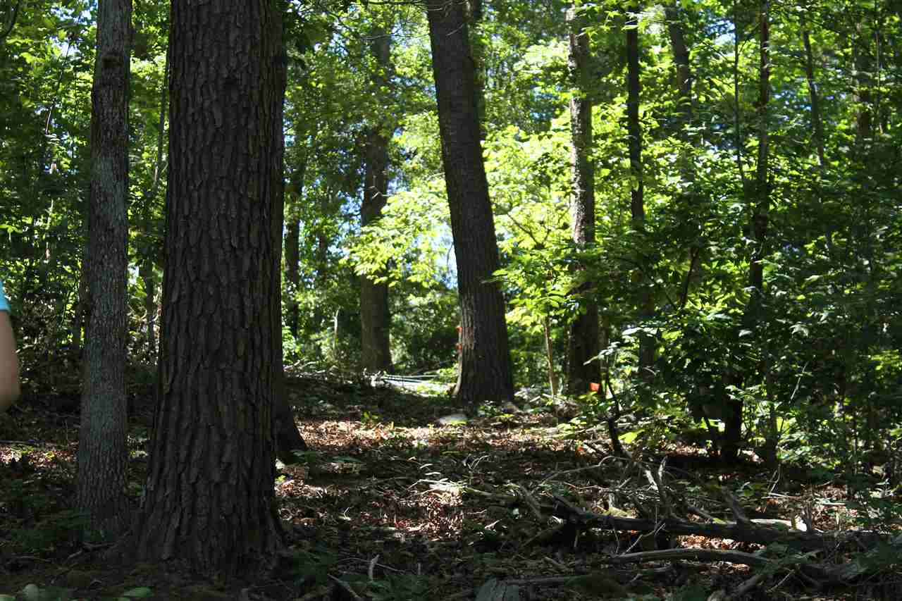 Residential Lot - Anderson, SC (photo 3)