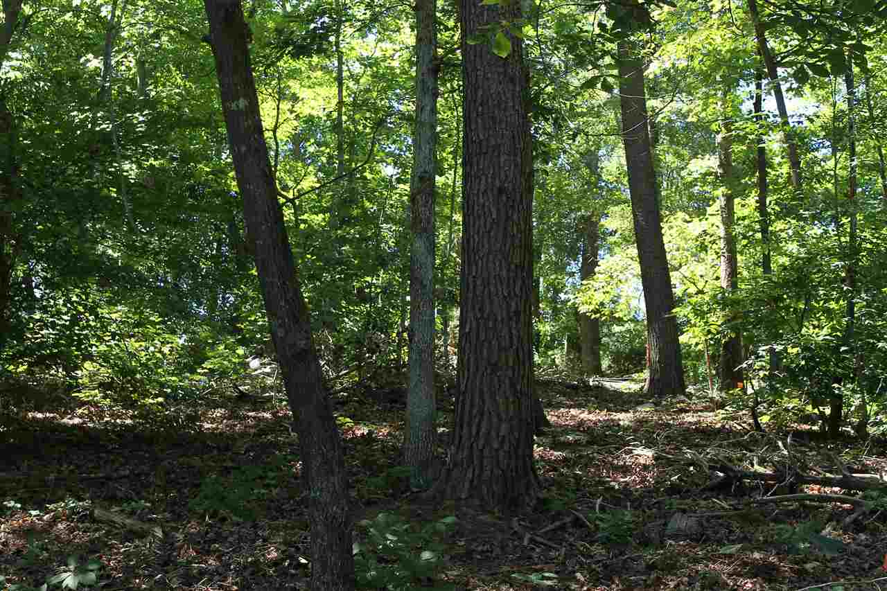Residential Lot - Anderson, SC (photo 4)