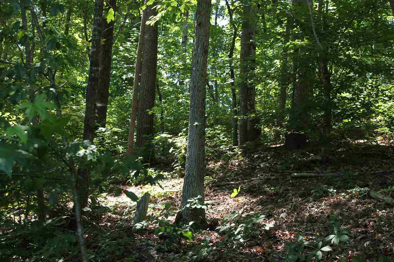 Residential Lot - Anderson, SC (photo 5)