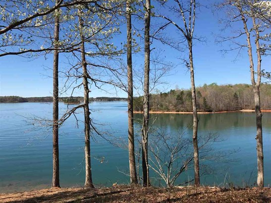 Residential Lot - Six Mile, SC (photo 3)