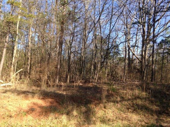 Residential Lot - Westminister, SC (photo 1)
