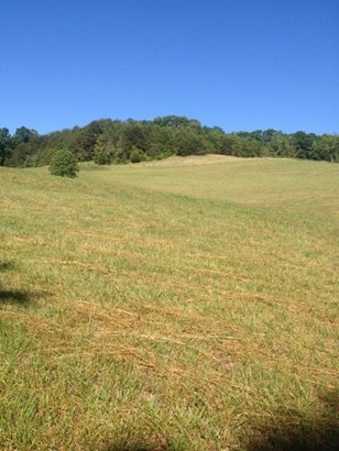 Acreage/Farm - Westminster, SC (photo 3)