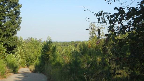 Acreage/Farm - Walhalla, SC (photo 1)