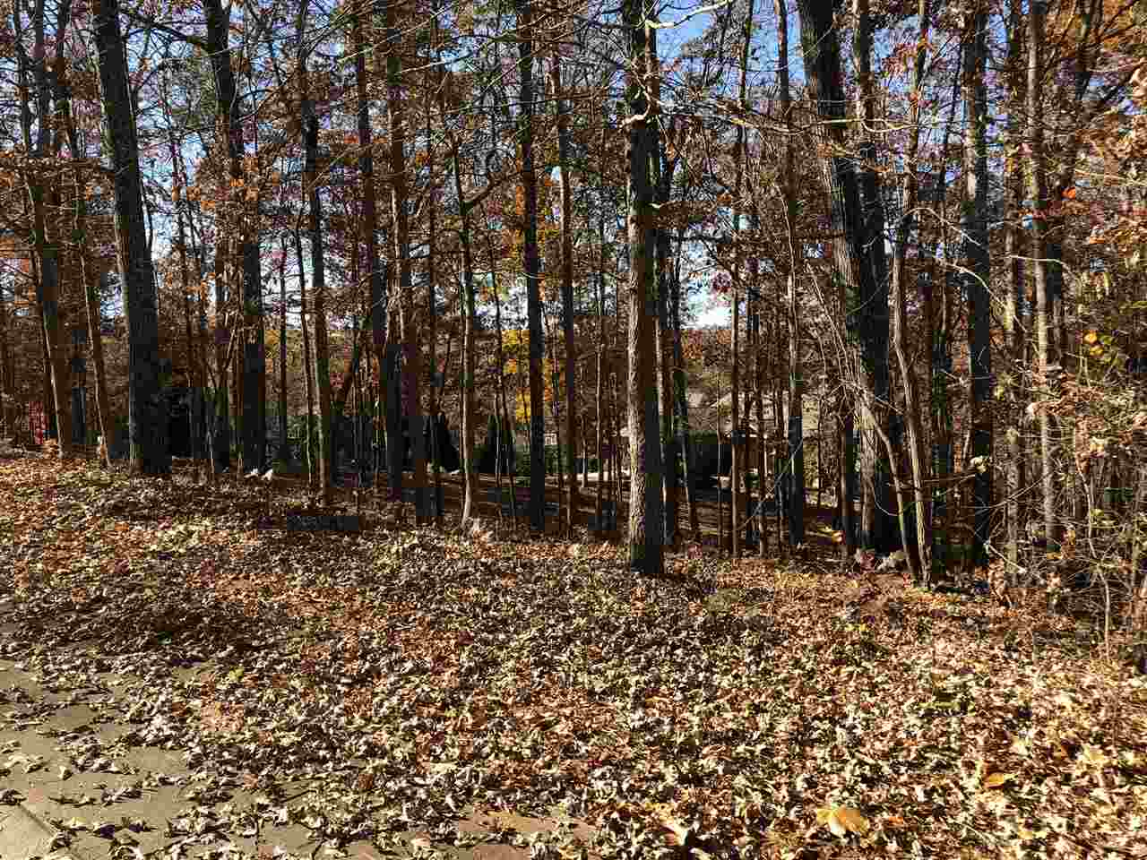 Residential Lot - Seneca, SC (photo 2)