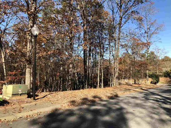 Residential Lot - Seneca, SC (photo 5)