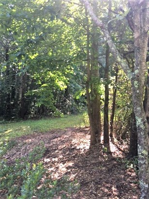 Residential Lot - Walhalla, SC (photo 3)
