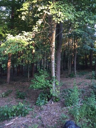 Residential Lot - Salem, SC (photo 2)