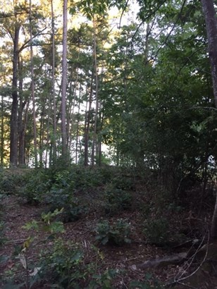 Residential Lot - Salem, SC (photo 5)
