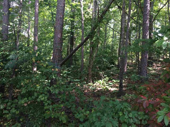 Residential Lot - West Union, SC (photo 4)
